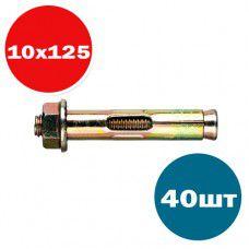 Анкерный болт с гайкой и втулкой SHF 10х125 (упак 40шт)
